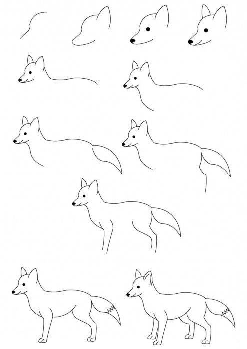 Рисунок лисы карандашом вот так выглядит всем знакомая рыжая лиса: изобразительная деятельность в детском саду рисование для детей темочки.