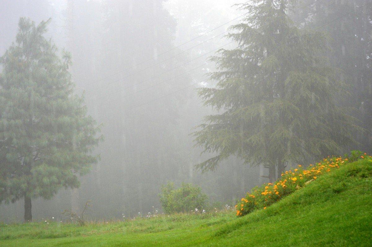 настоящая, картинки разных дождей фото никогда