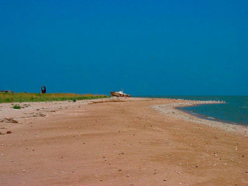 своими камышеватская фото пляжа это зима