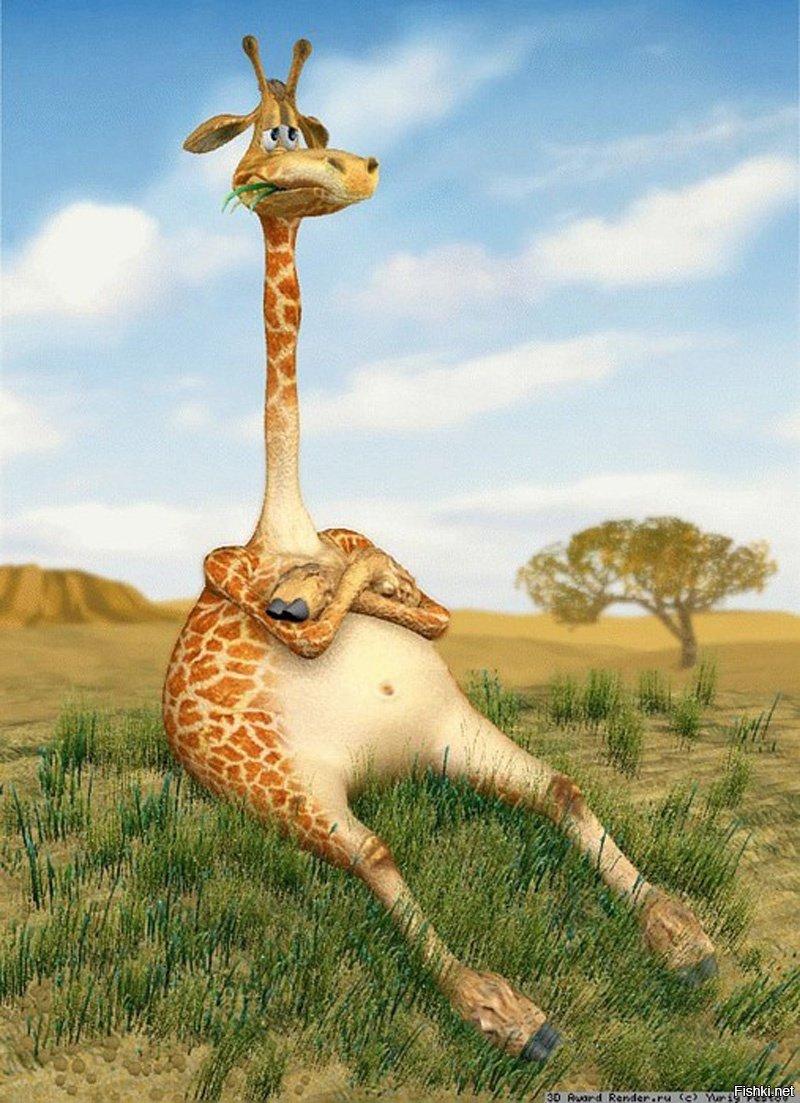 Жираф в прикольных картинках, открытки