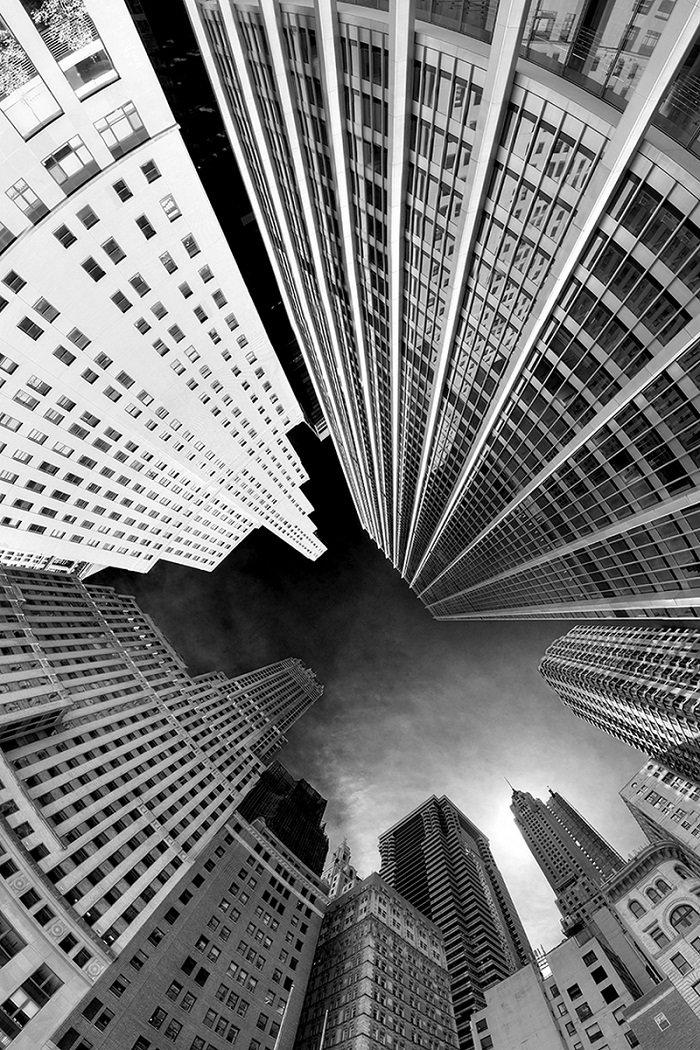 Голубь мира, черно белые картинки картинки