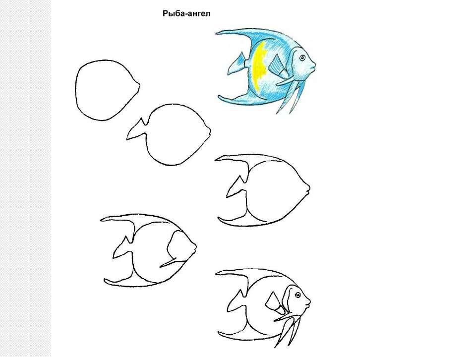 Картинки рыбки поэтапно