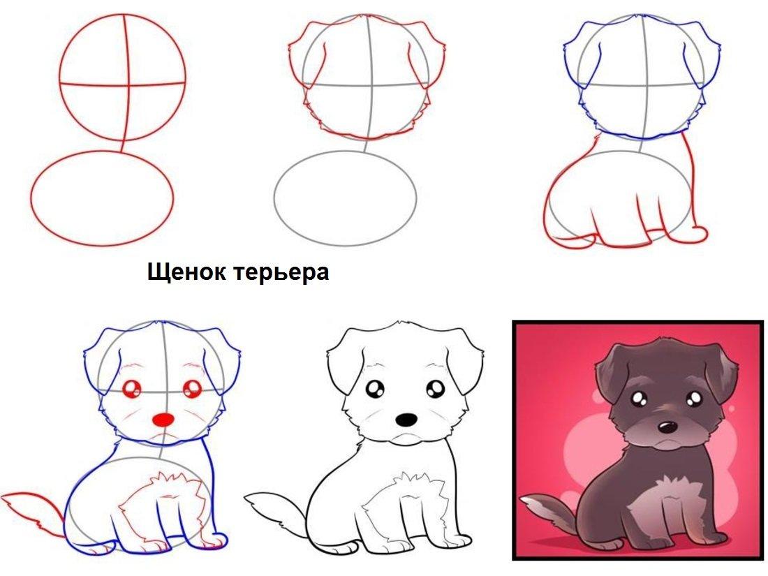 Картинки поэтапно щенки