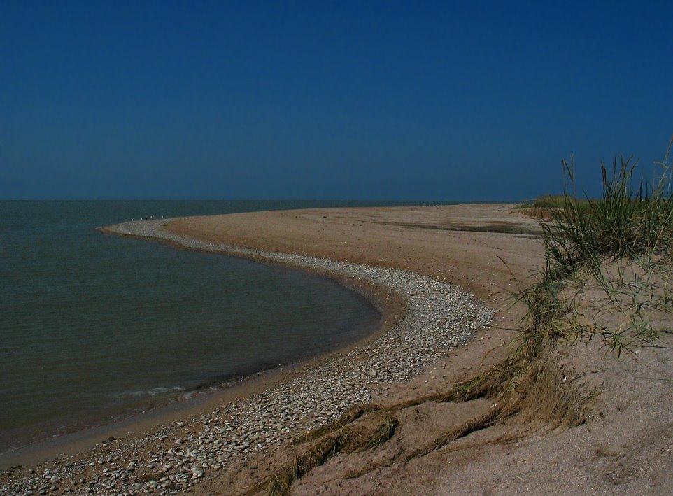 камышеватская фото пляжа сохраняет