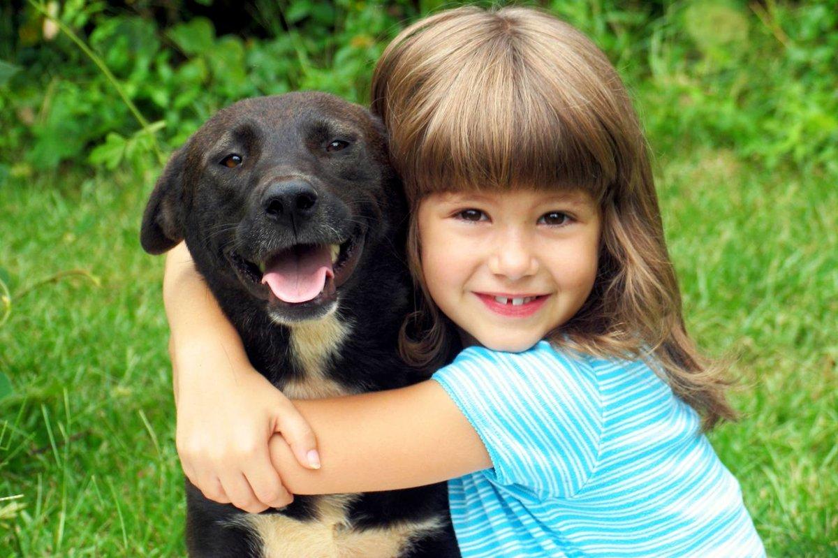 Собаки фото красивые и смешные с детьми