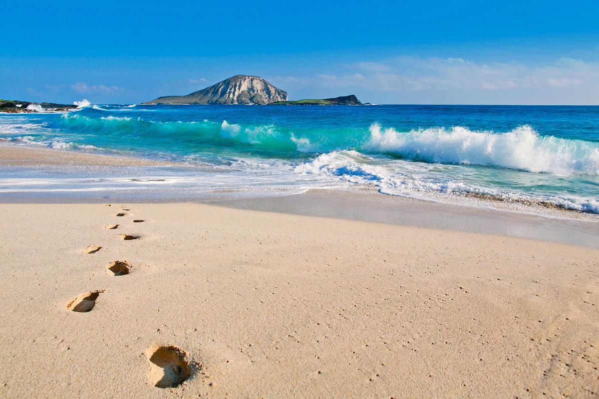 Аниме крутые, море и лето картинки