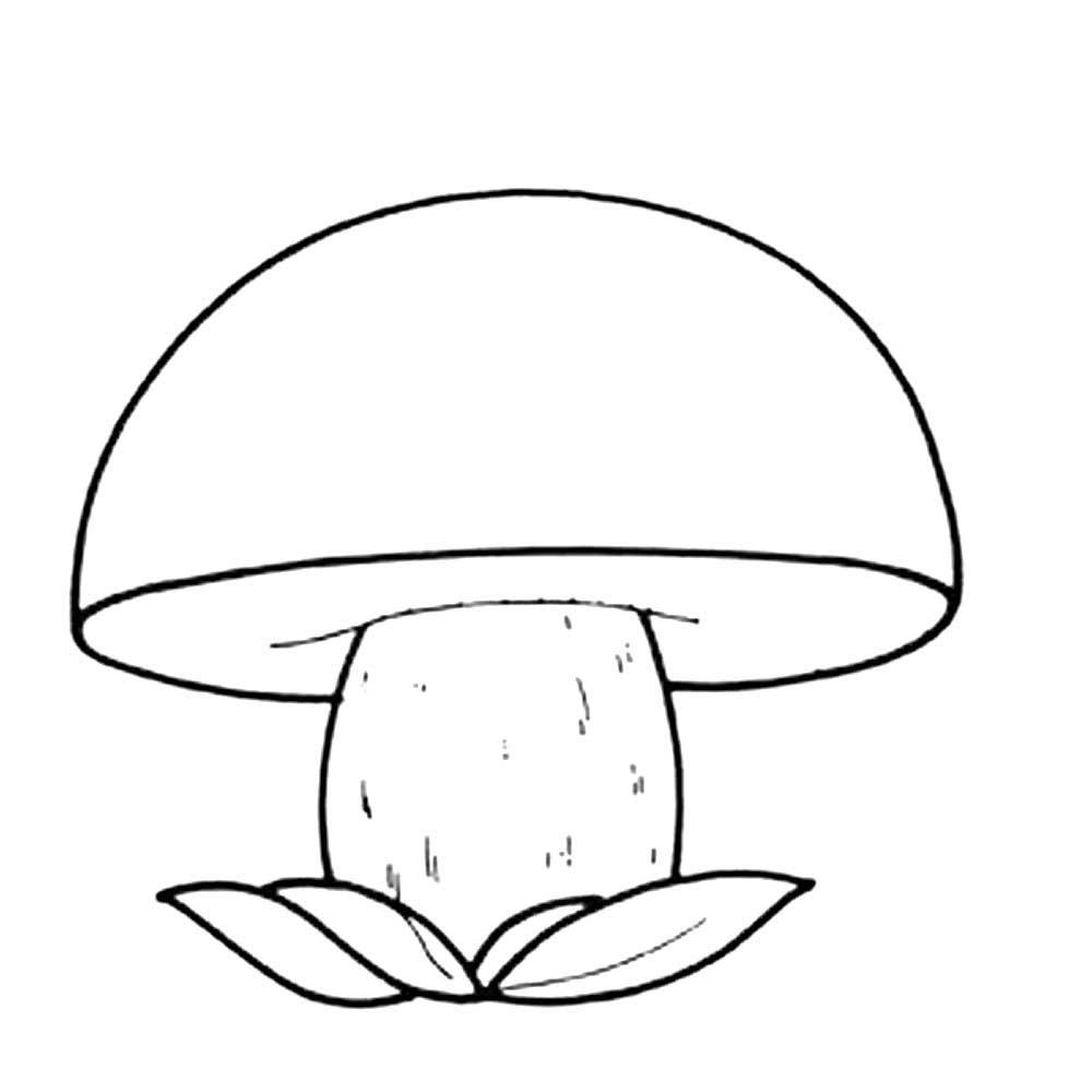 грибы фото для вырезания критерий возможность как