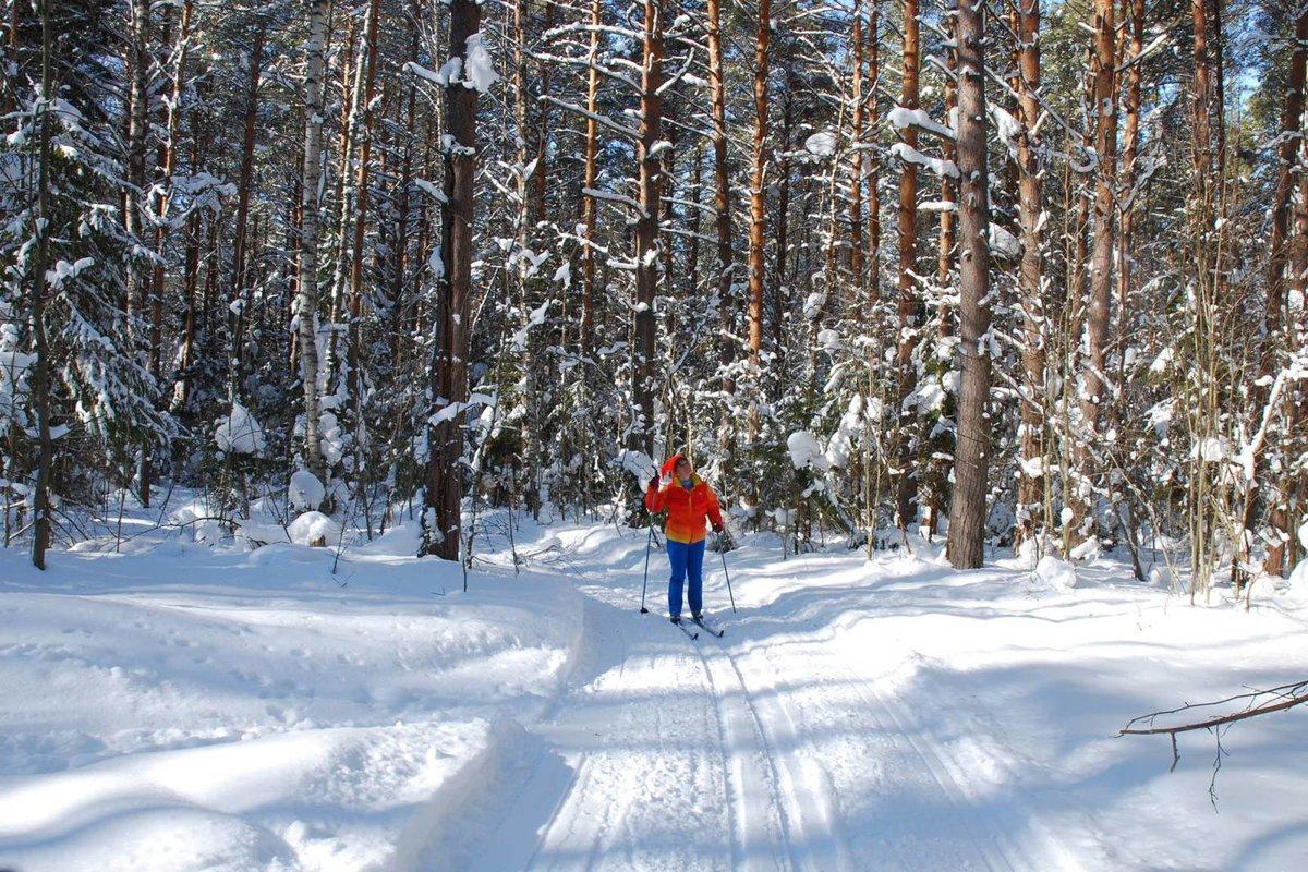 немного фотосессия в лесу зимой с лыжами памятник