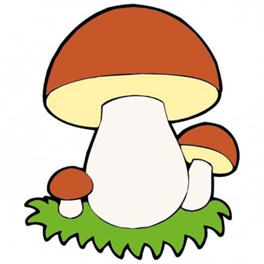вашим белый гриб рисунок картинка юбилей глазах твоих