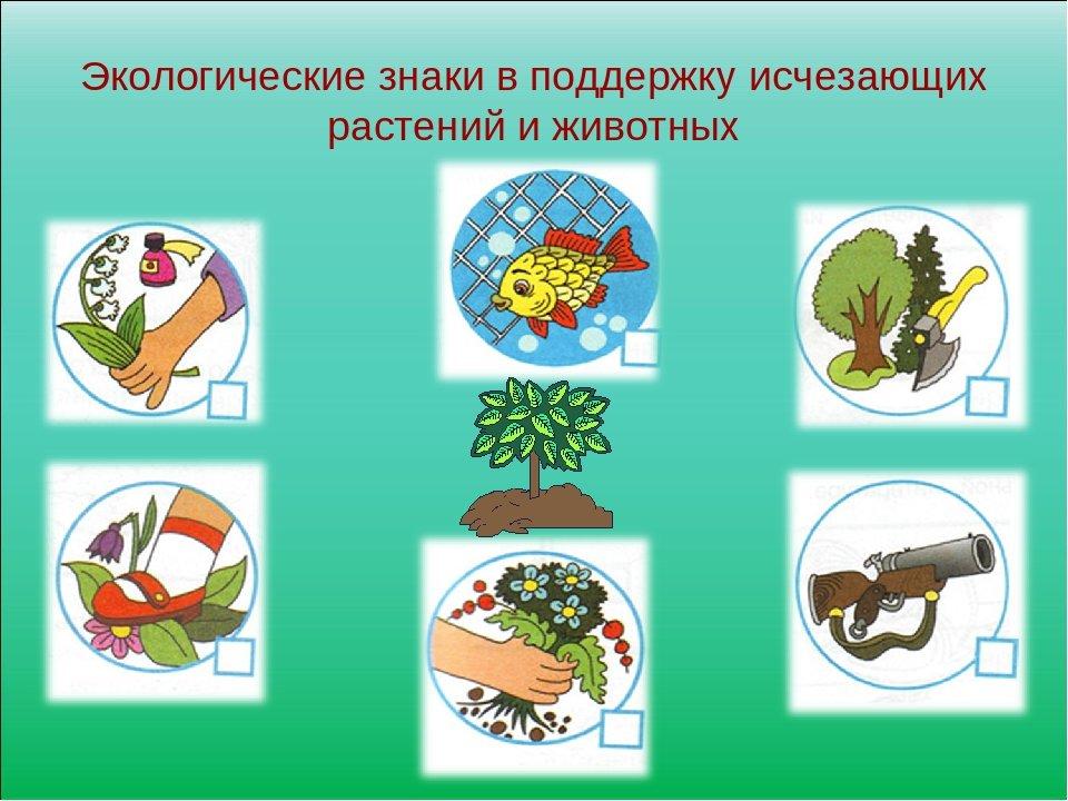 Картинки для дошкольников охрана природы