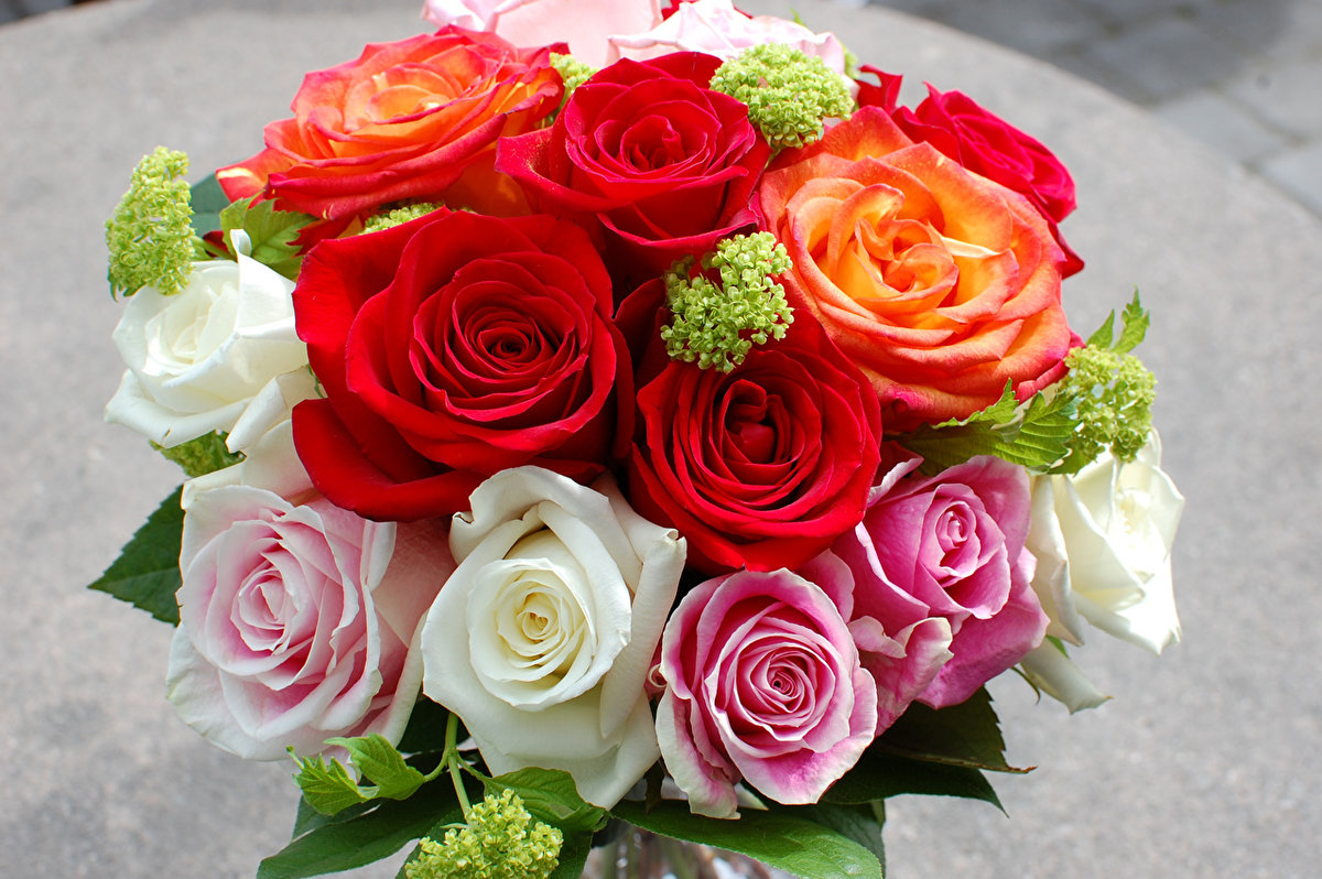 Фотографии цветов розы букеты