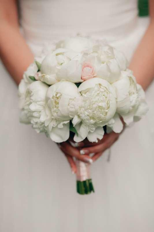 Букет невесты из белых пионов и одной розовой розы, декорированный розовой атласной лентой