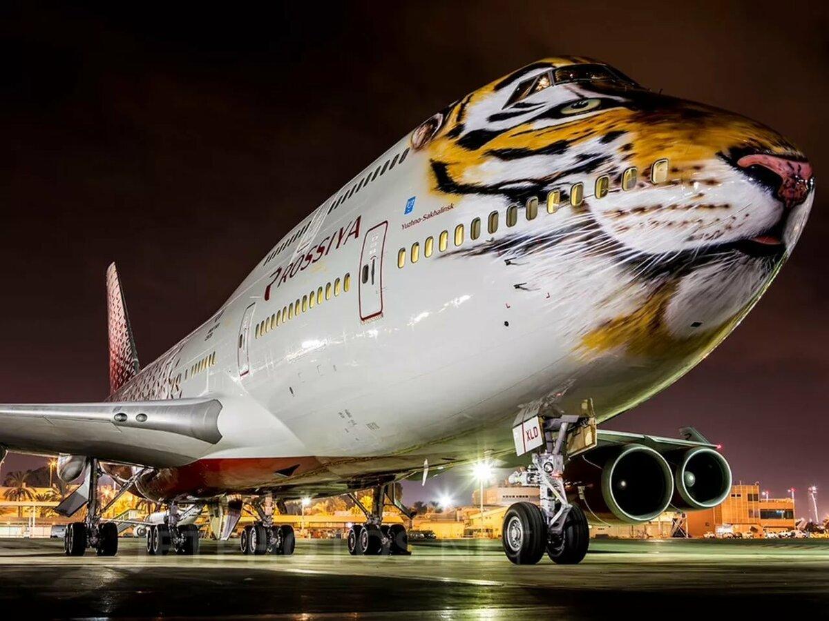 дашевская авиакомпания россия двухэтажный самолет фото хаш