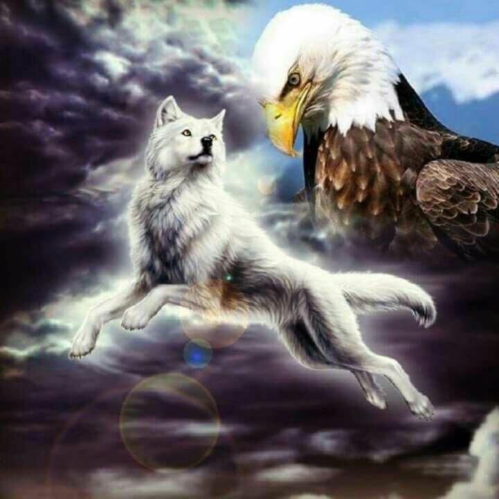 открытки птичка и волк ремонт