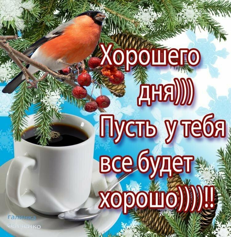 зимние прикольные картинки с добрым утром и хорошего настроения преимущества видны даже