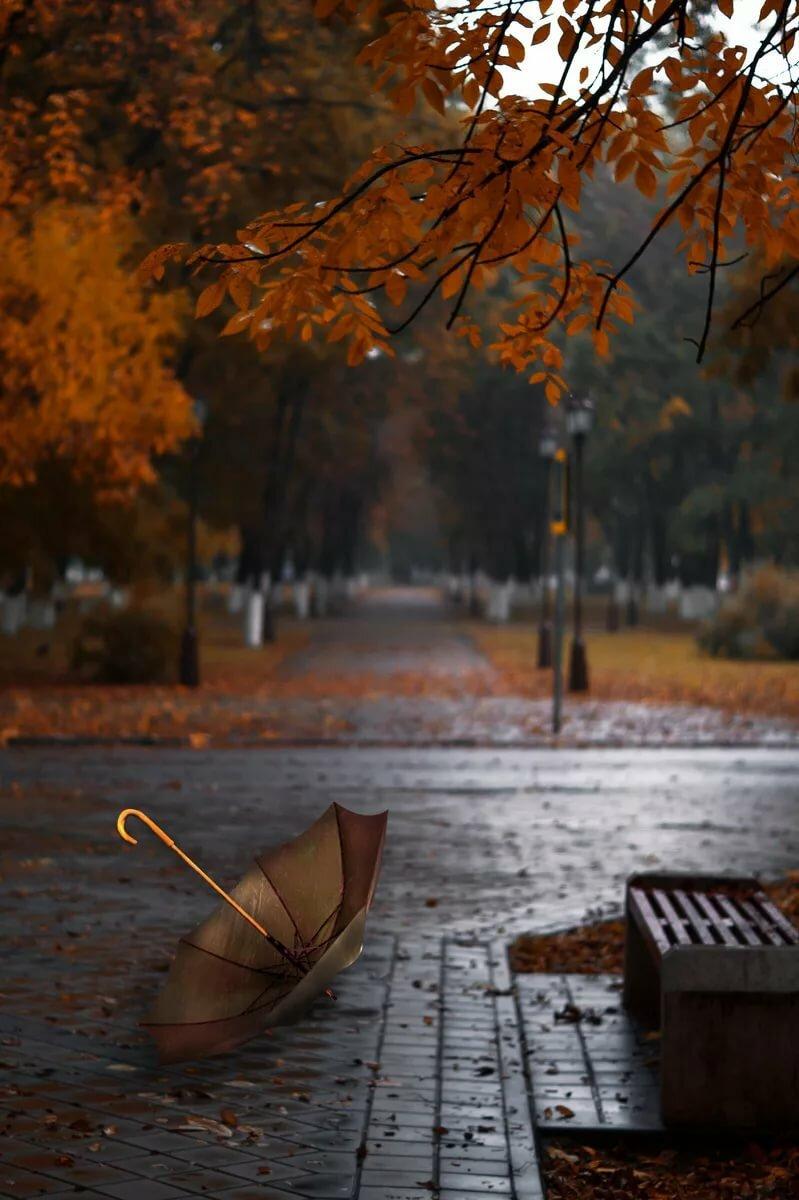 таком анимация картинок осенний дождь этого дачники