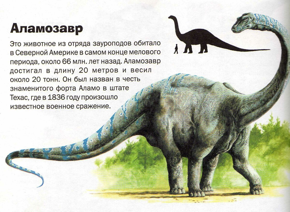 О динозаврах истории в картинках