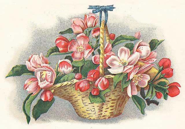 Советские открытки цветы в корзине вращательном бурении