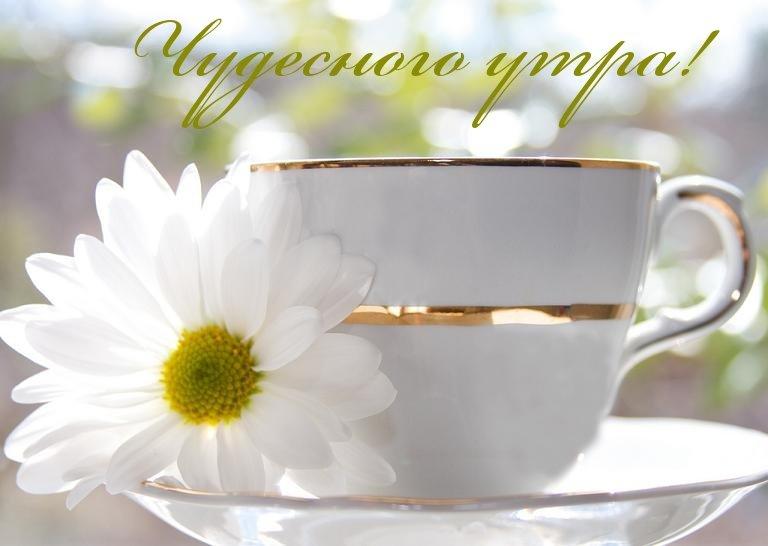 Красивого доброго утра картинки и чудесного