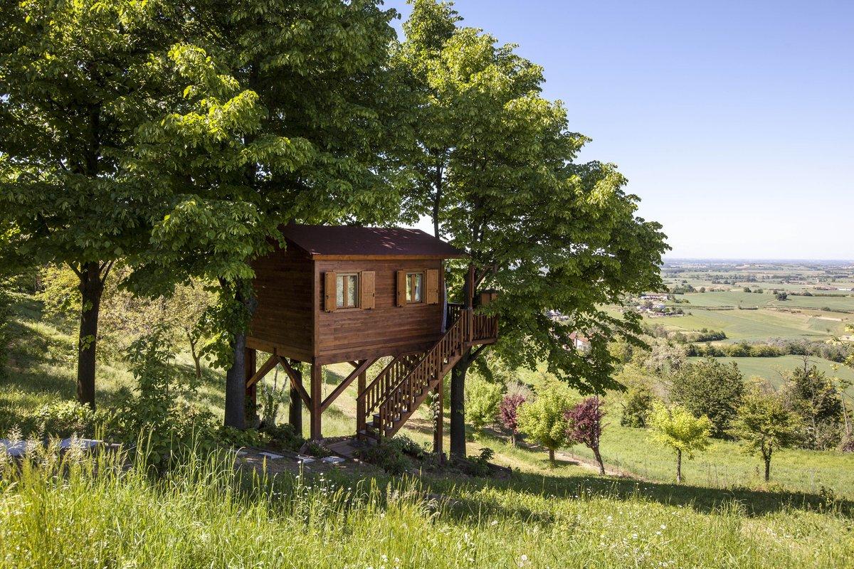 Дом и дерево фото