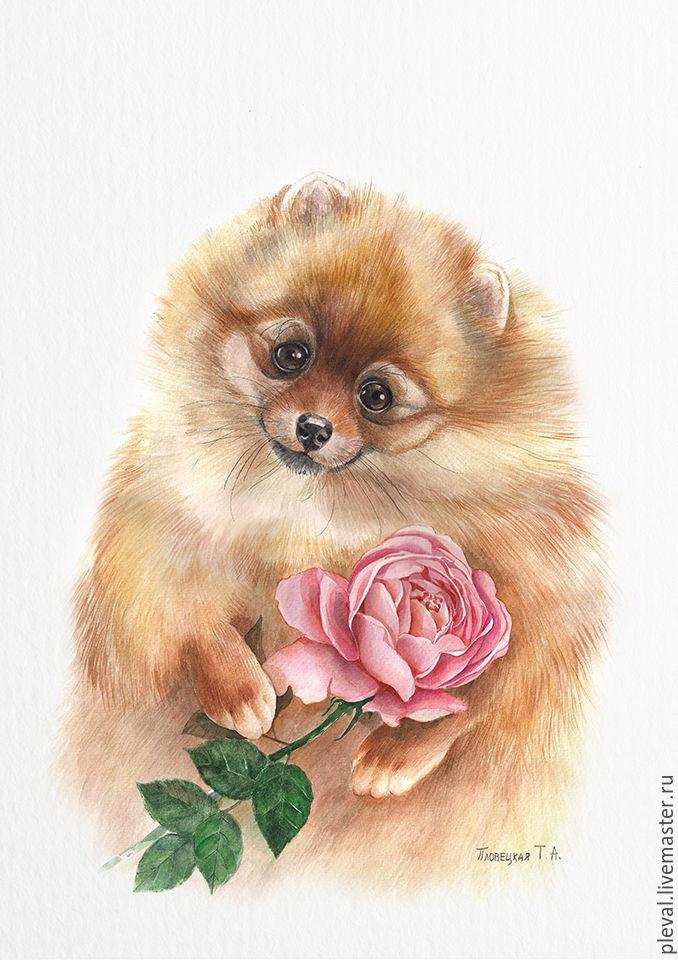 Собачка с цветами картинки нарисованные, днем