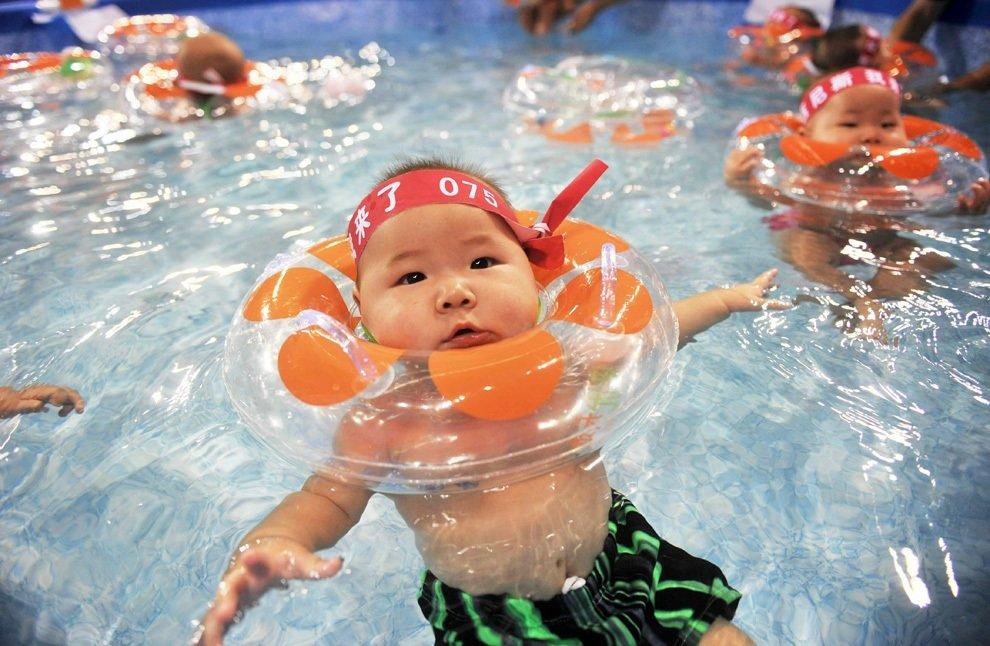 Картинки плавание веселые