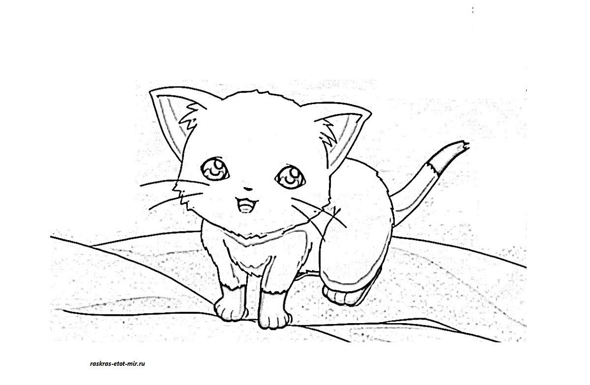 «Раскраски аниме котики - Раскрась этот мир! Раскраска ...