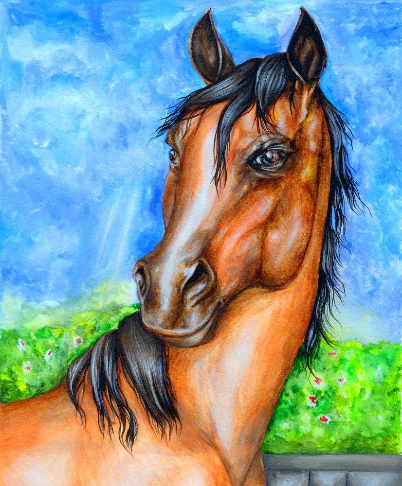 Картинка лошади на бумаге