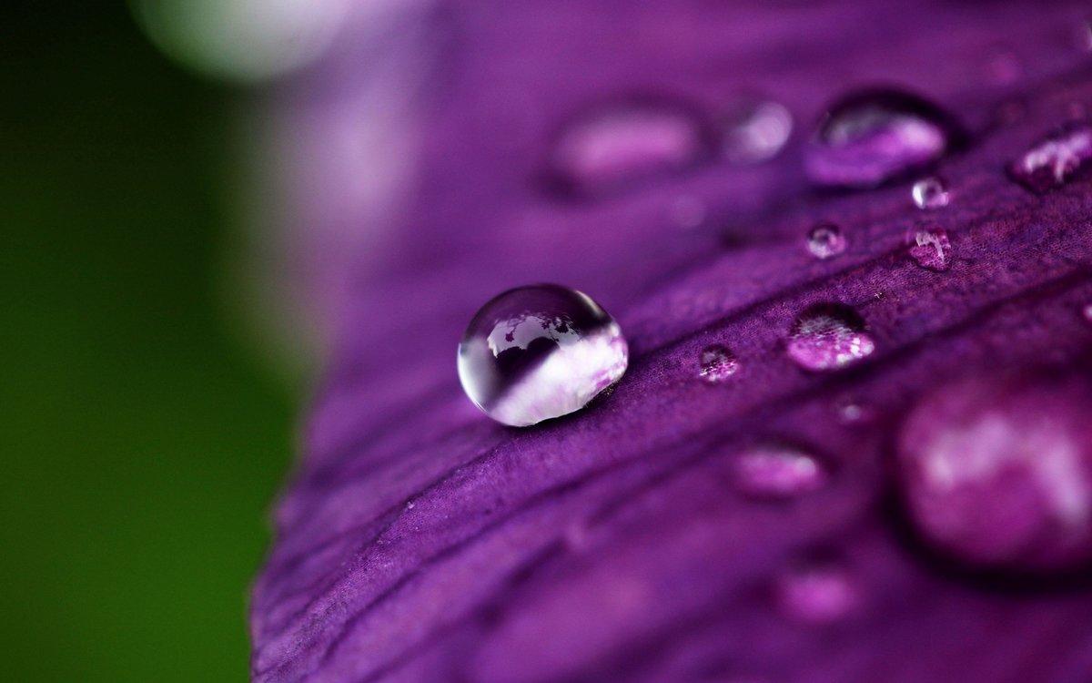 Красивые картинки с каплями воды, открытка хорошего дня