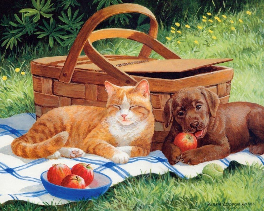 Картинки прикольные с животными о выходных, рвсн поздравления марта