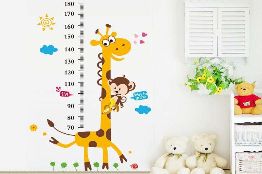 Картинки ростомеров в детском саду