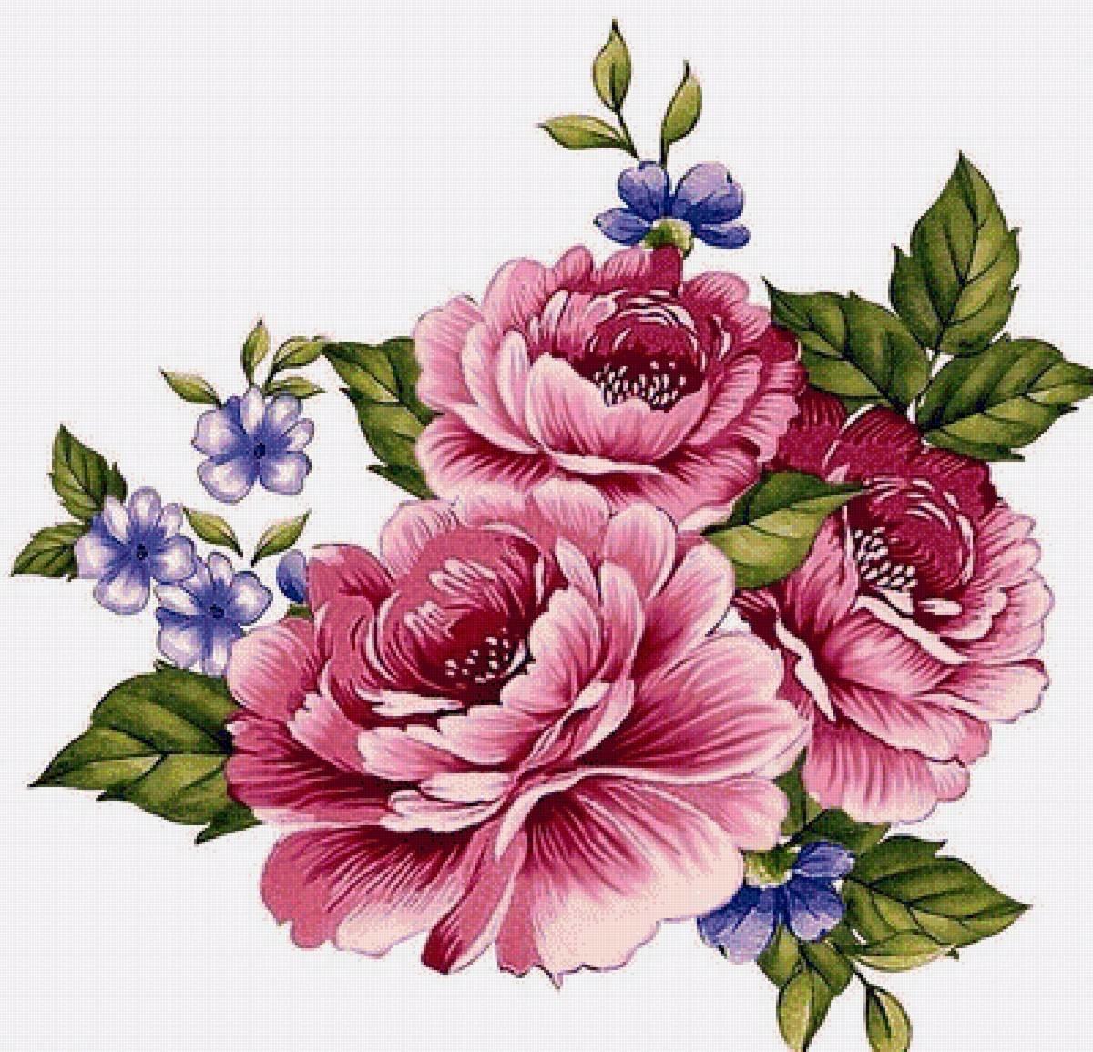 Открытки, цветы на открытку цветные