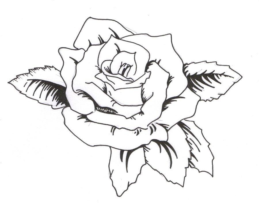 Тату картинки простые розы