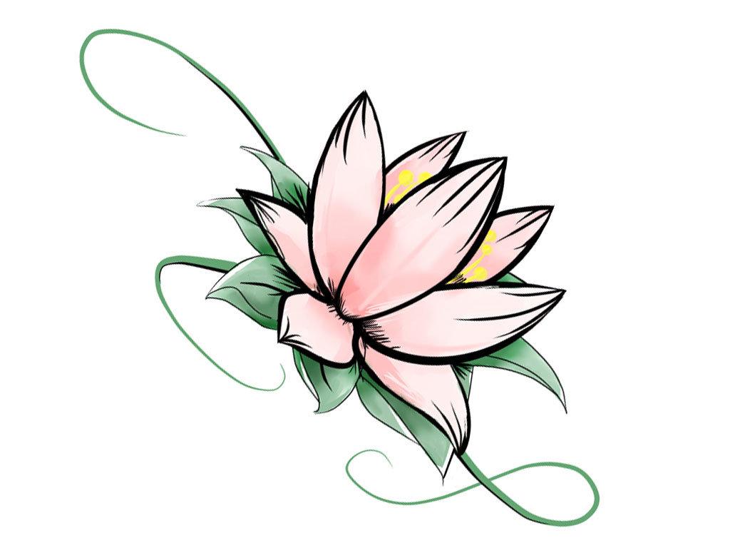Цветок лотоса картинки рисованный, москва