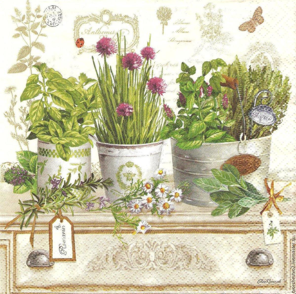 Скрапбукинг картинки летние натюрморты с цветами