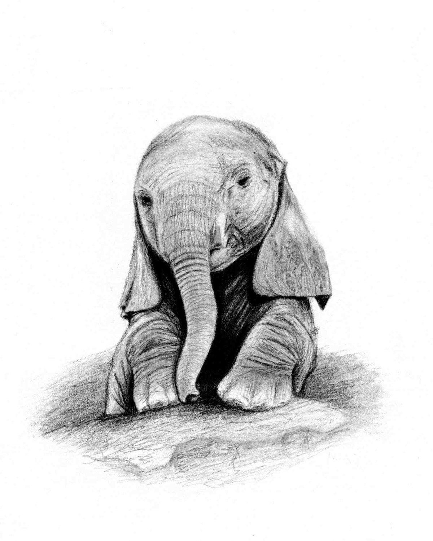 примеру, слоники рисунок карандашом эту кнопку