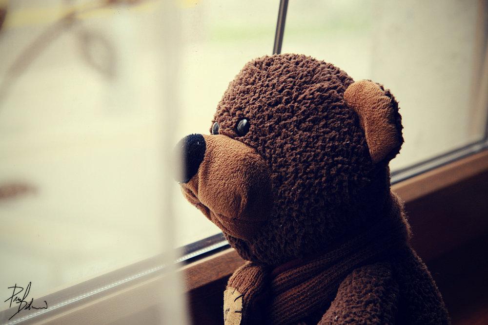 Смешные днем, картинка с медвежонком скучаю