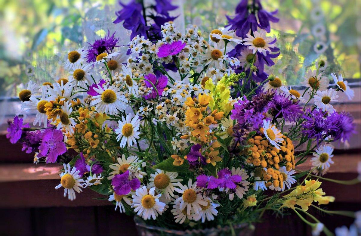 Красивые полевые цветы в букеты в открытке