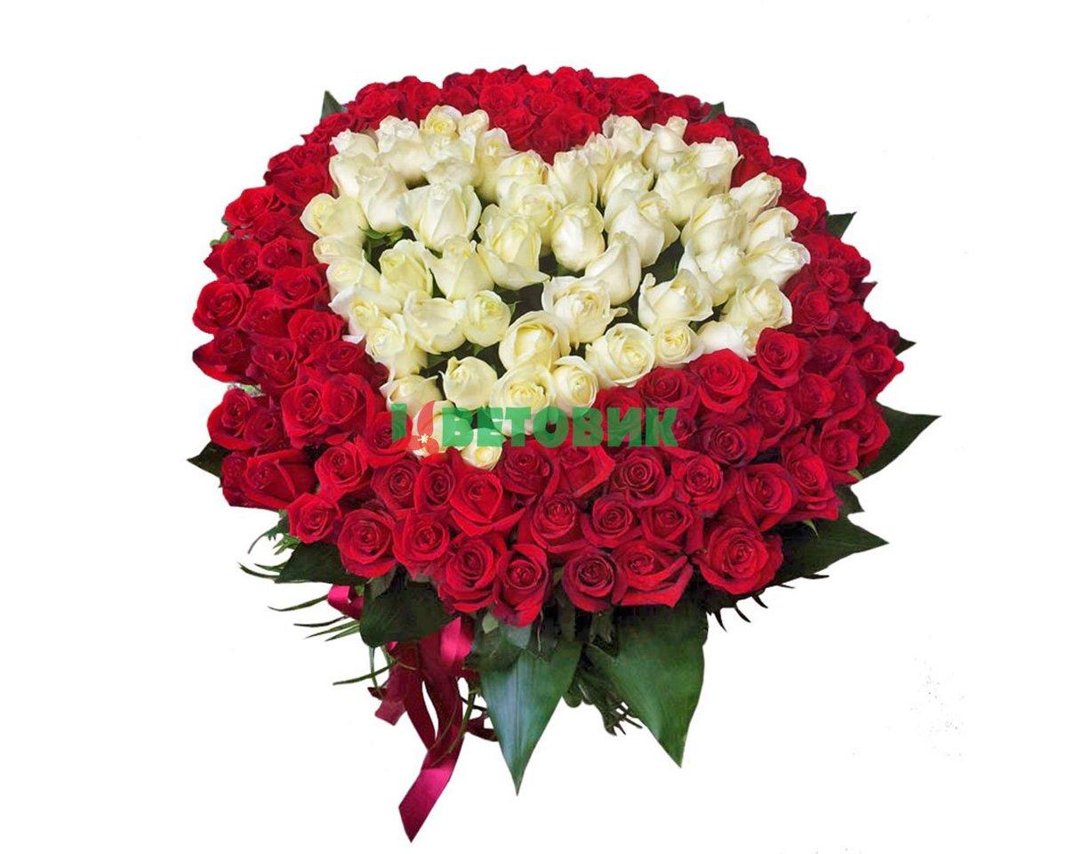 Картинки букет красных роз с белыми