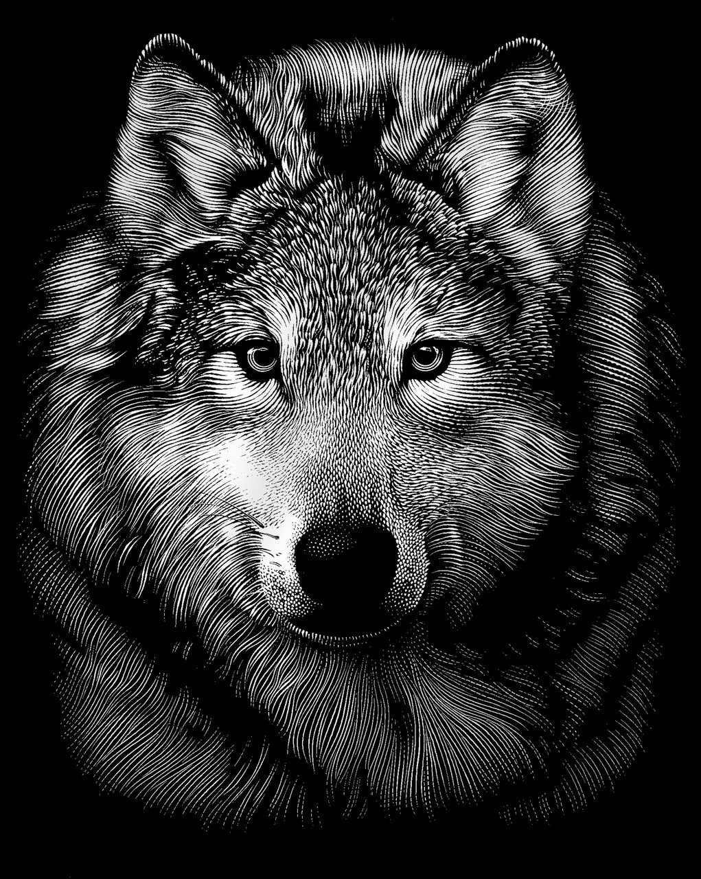 Картинки для мужчин волк, пресвятой