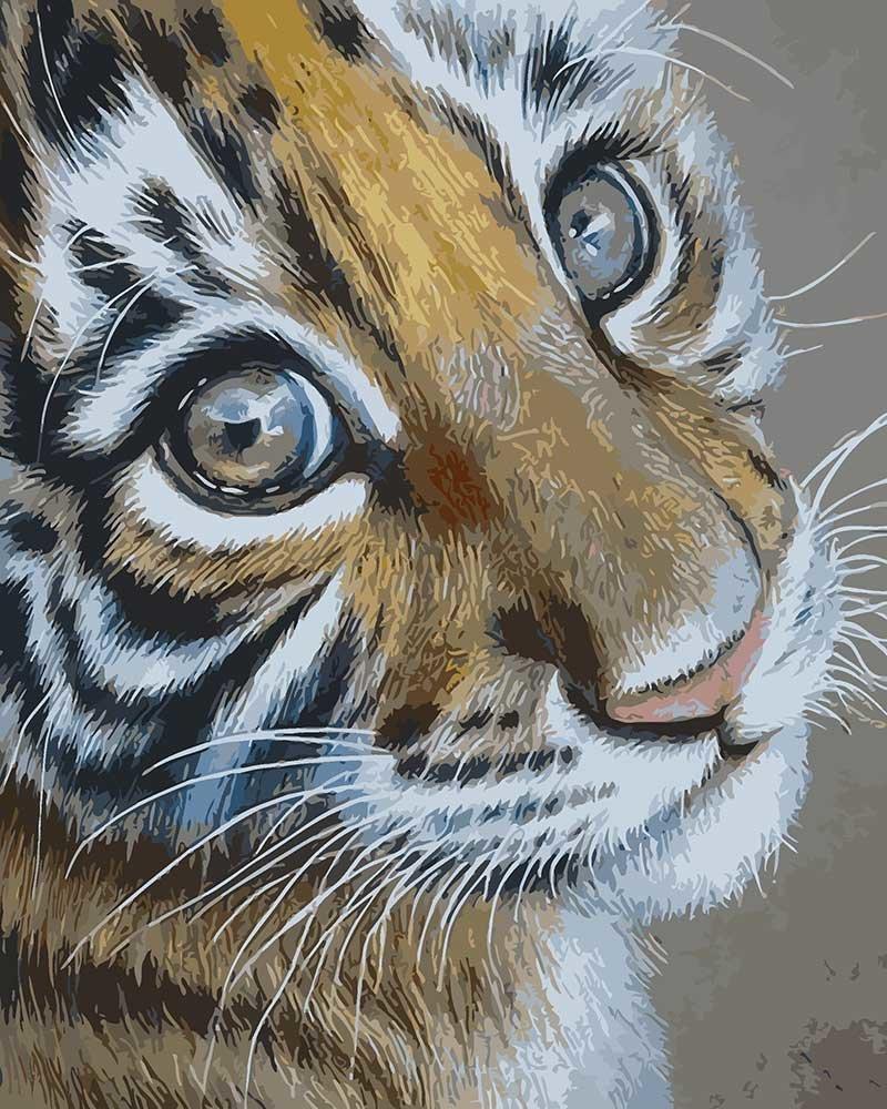 рисунки животные тигр выглядит бородавчатый