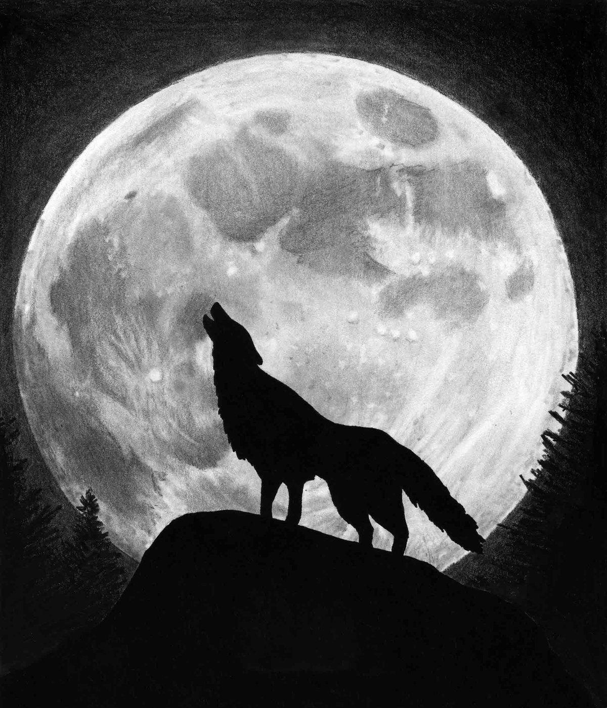 Фотографии волка с ну погоди уже