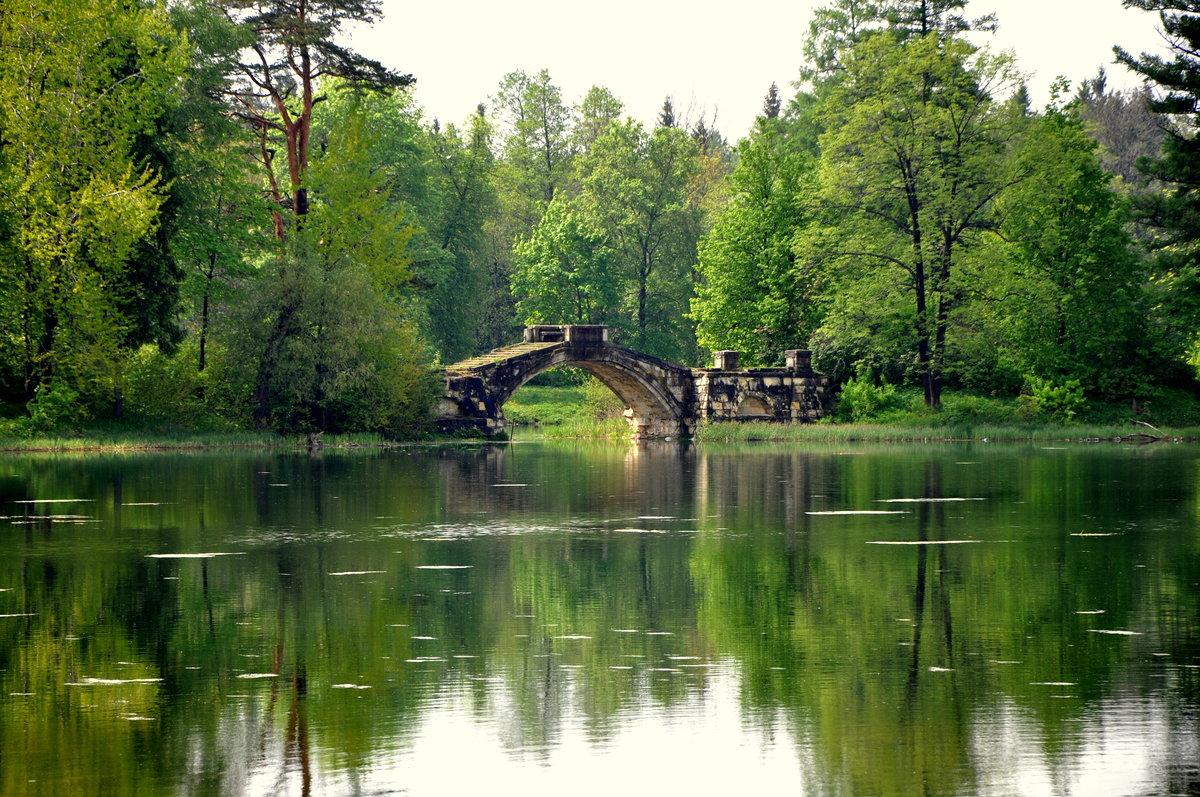 Мосты с водоемом картинки