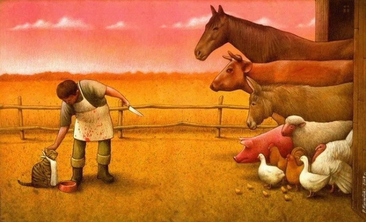 Свиньи, смешные картинки про бытие