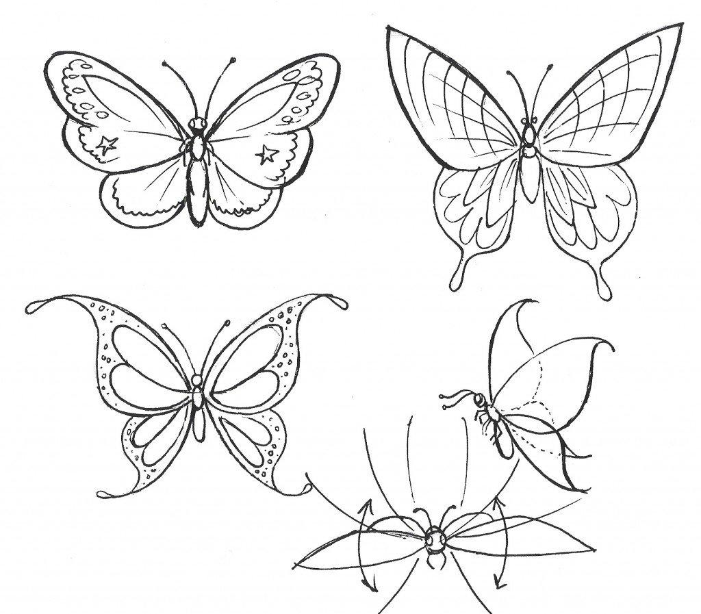 Бабочки рисунки карандашом картинки