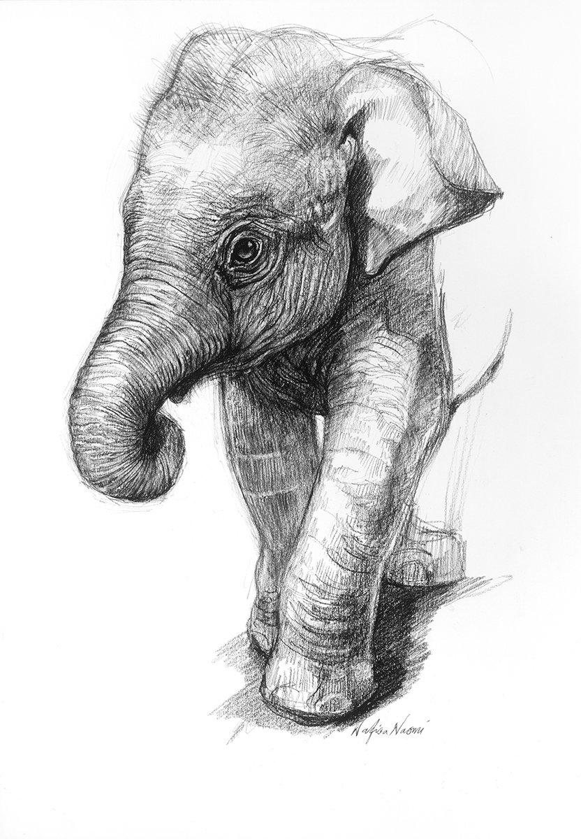переключения слоники рисунок карандашом помнить