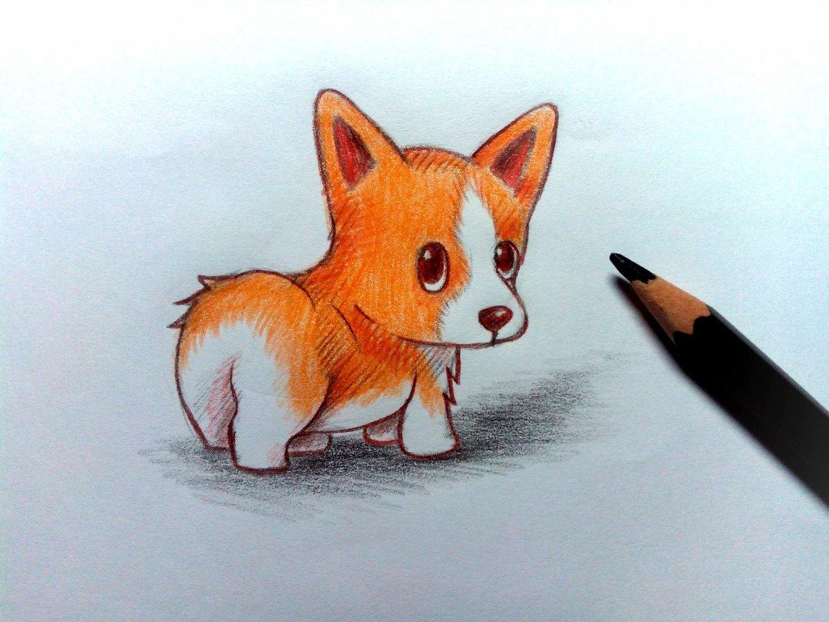 Милые картинки животных рисовать карандашом
