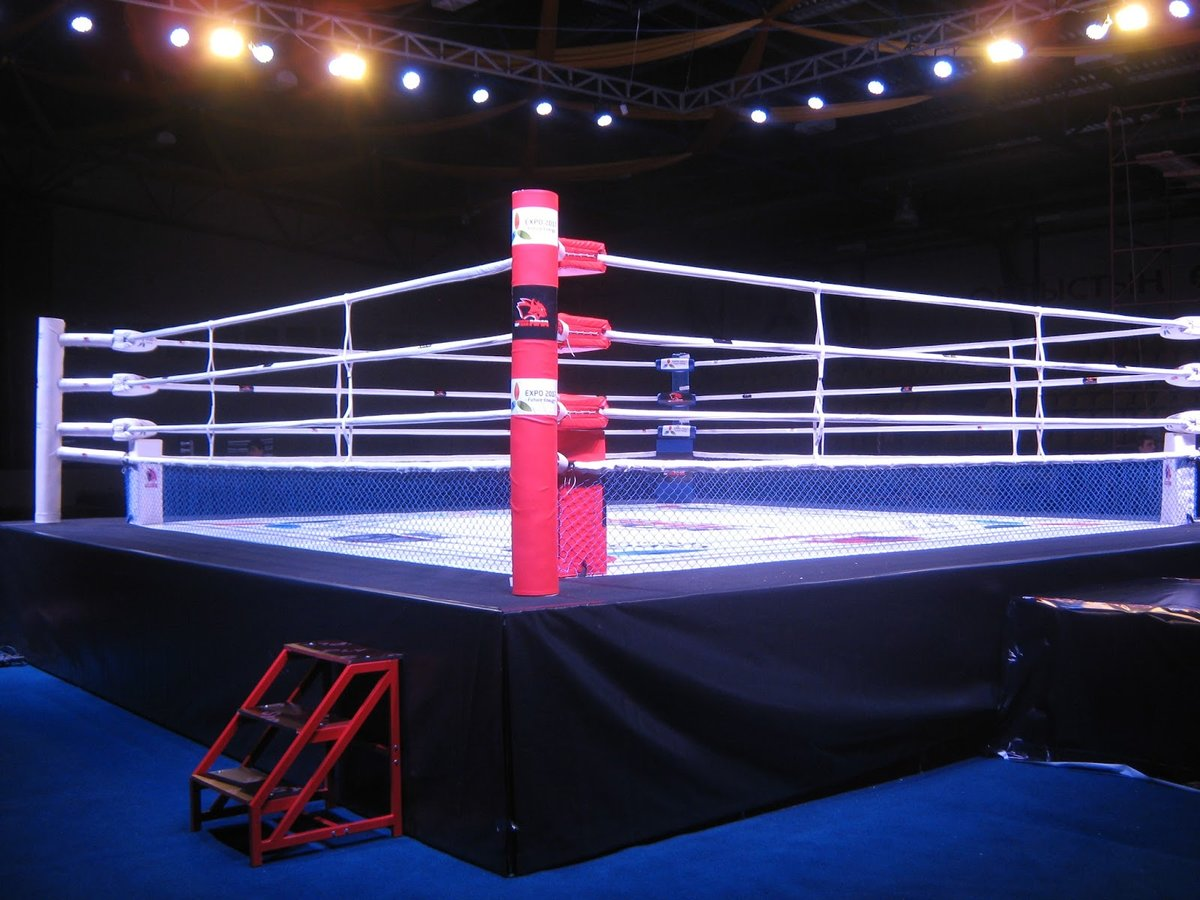 Картинка боксерского ринга
