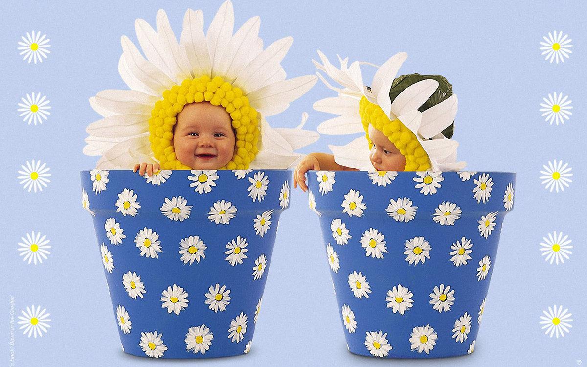 Красивые, поздравительные открытки с рождением близнецов