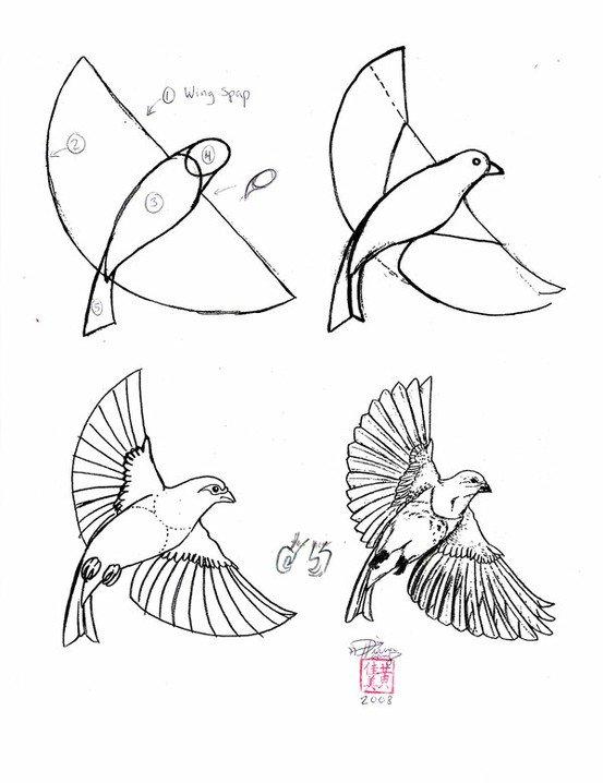 теперь картинки летящей птички карандашом того, чтобы